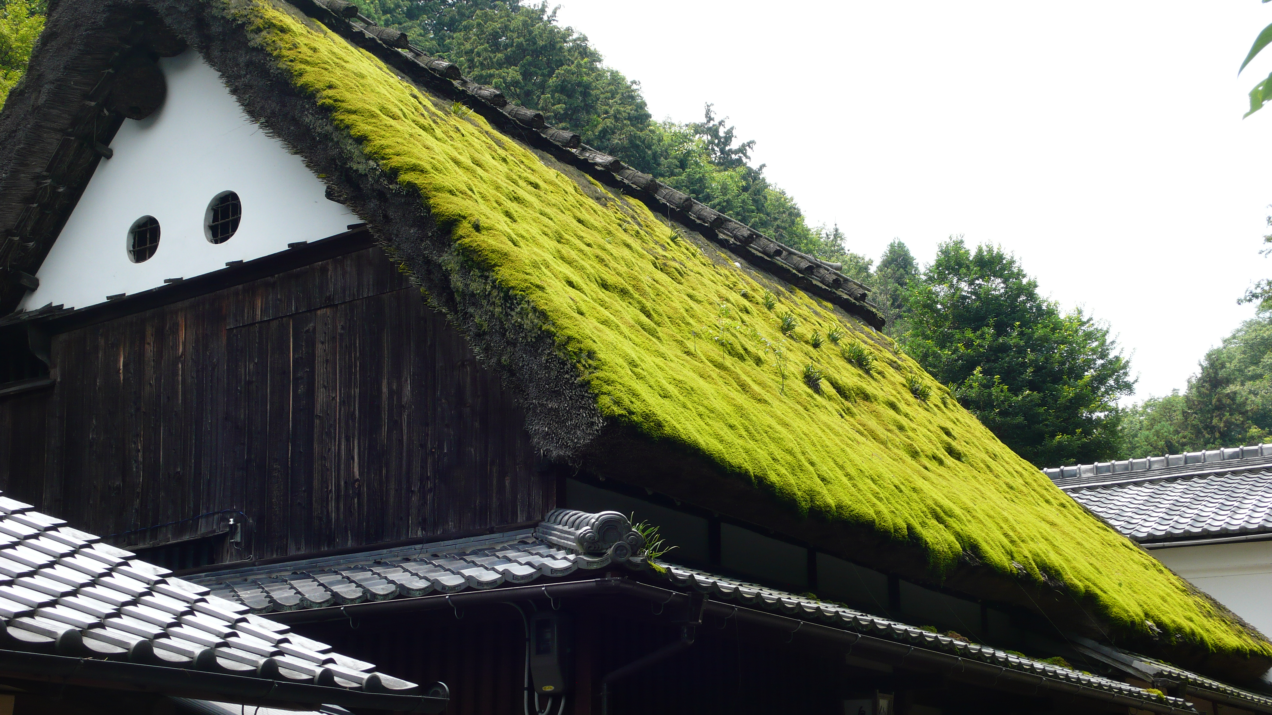 green roof, Kyoto