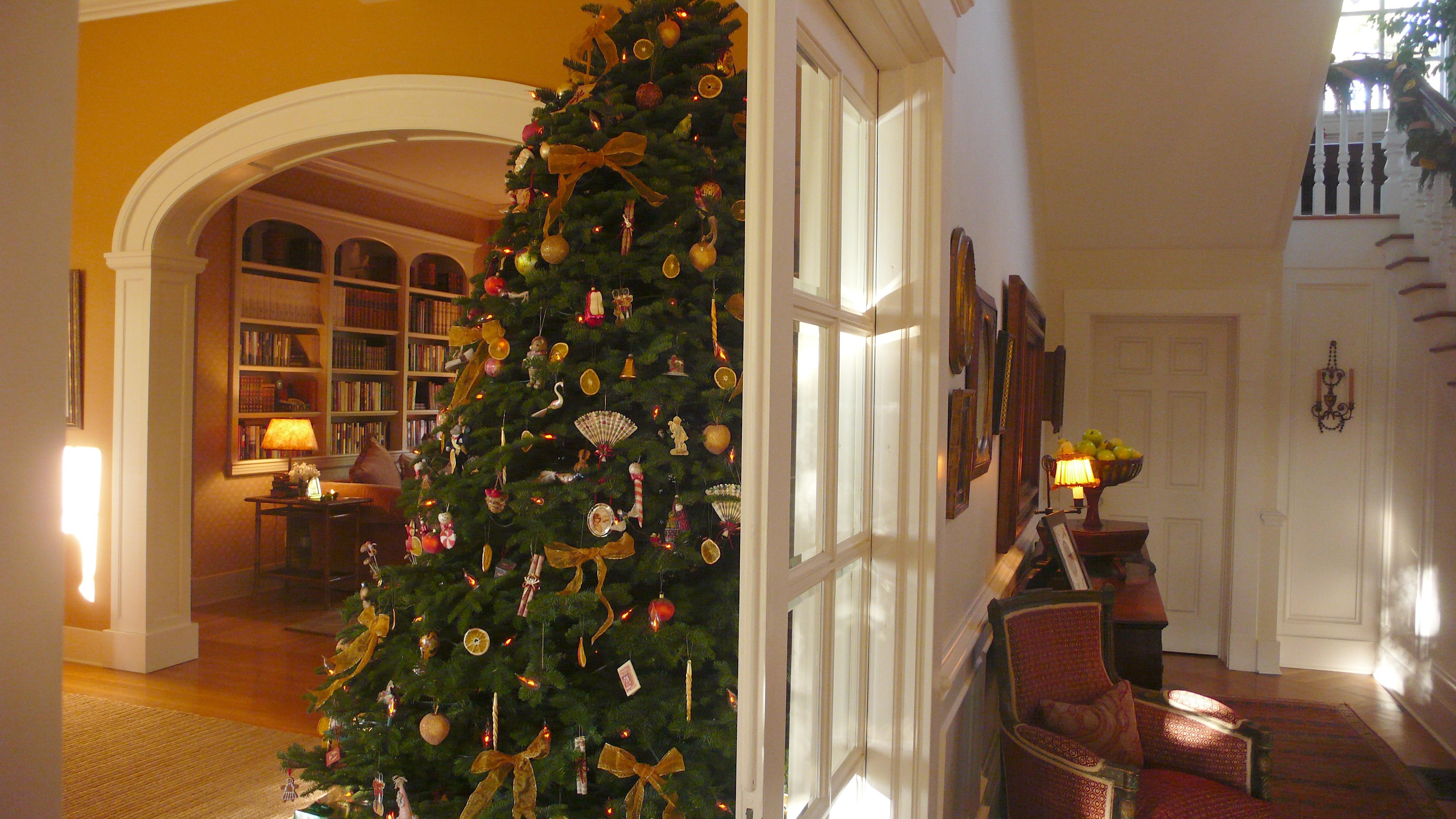 Our Christmas tree. slimpaley.com
