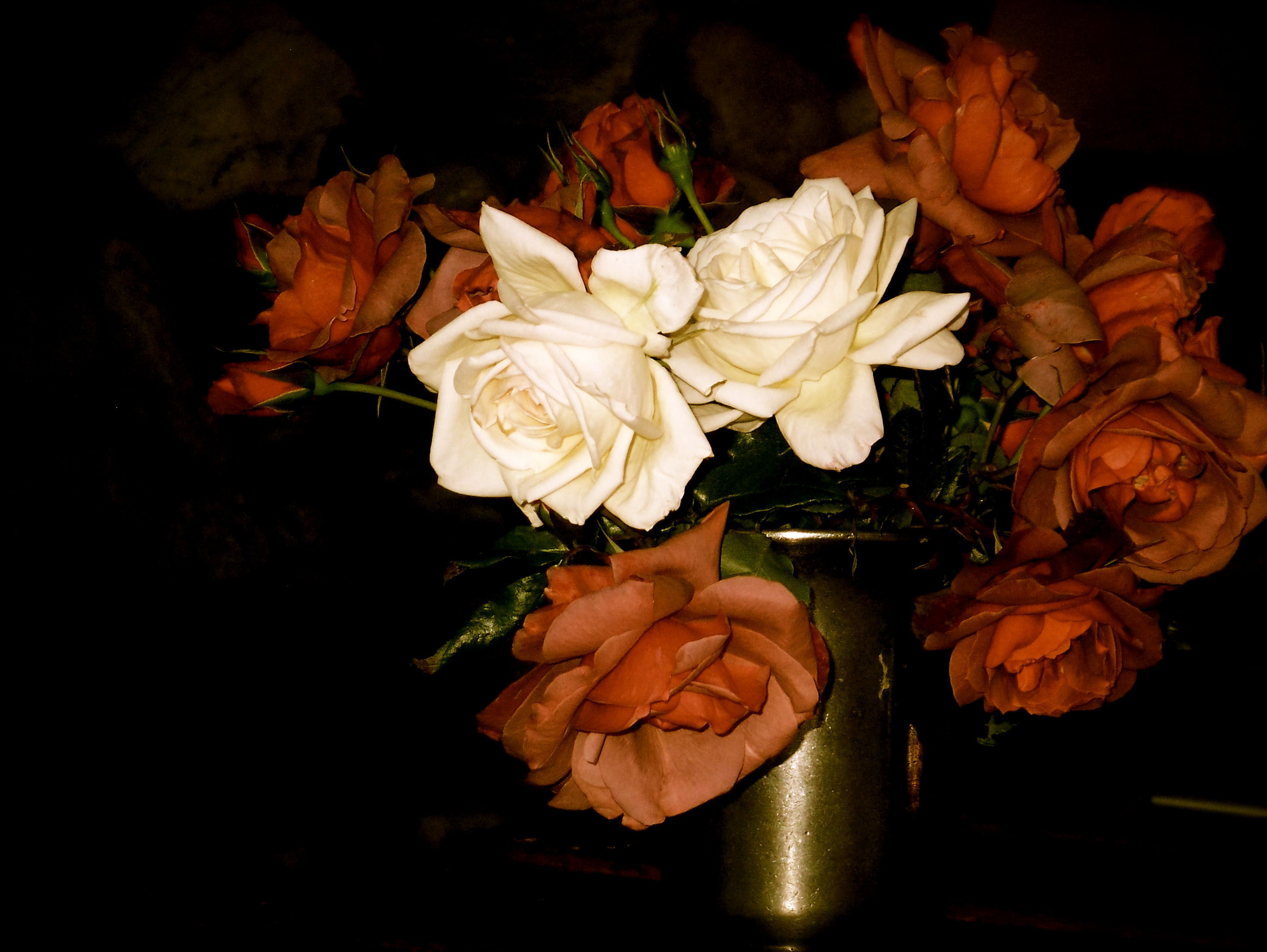 roses slimpaley.com