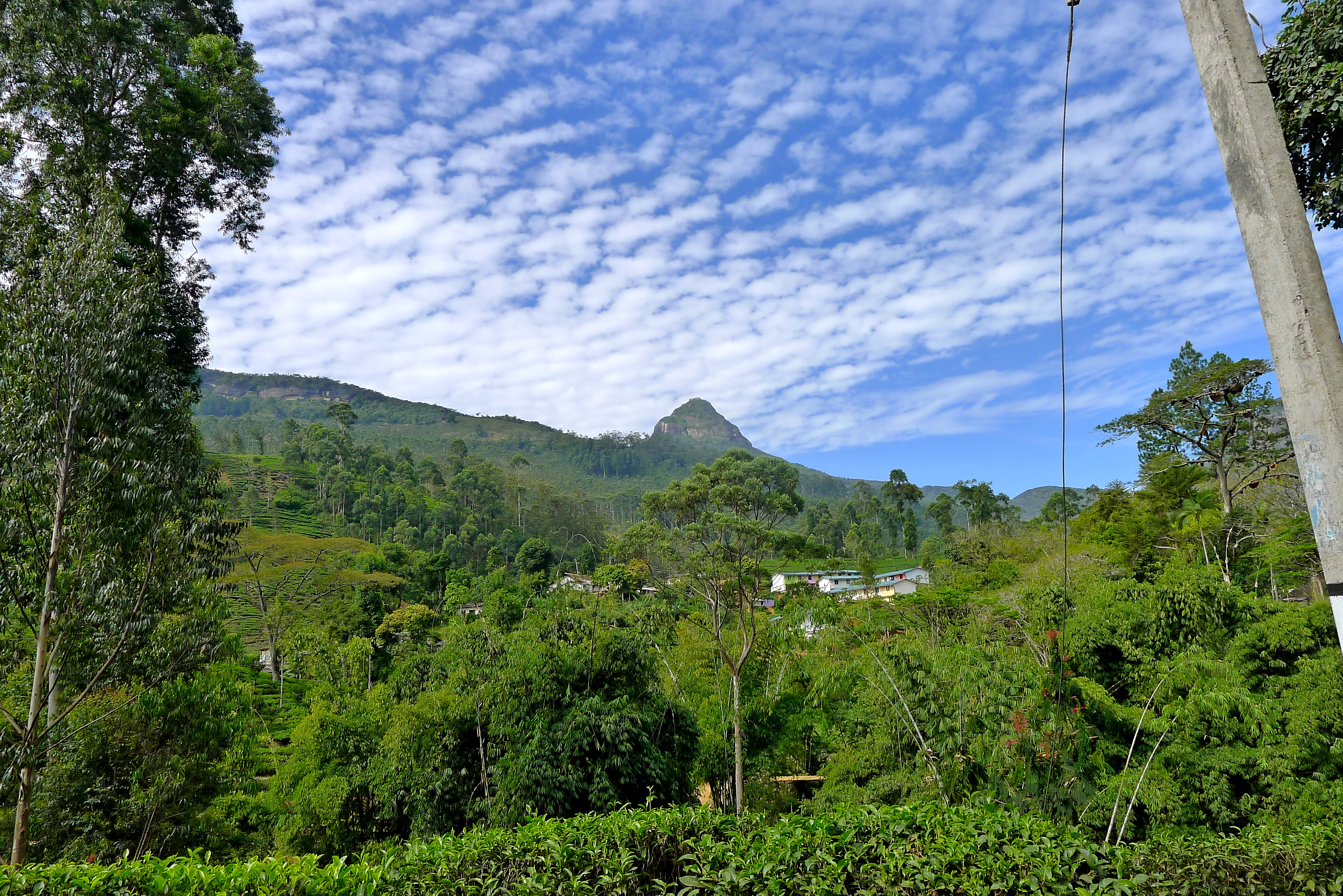 Adam's Peak, Sri Lanka, Slimpaley.com