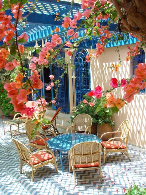 bouganvilla covered terrace