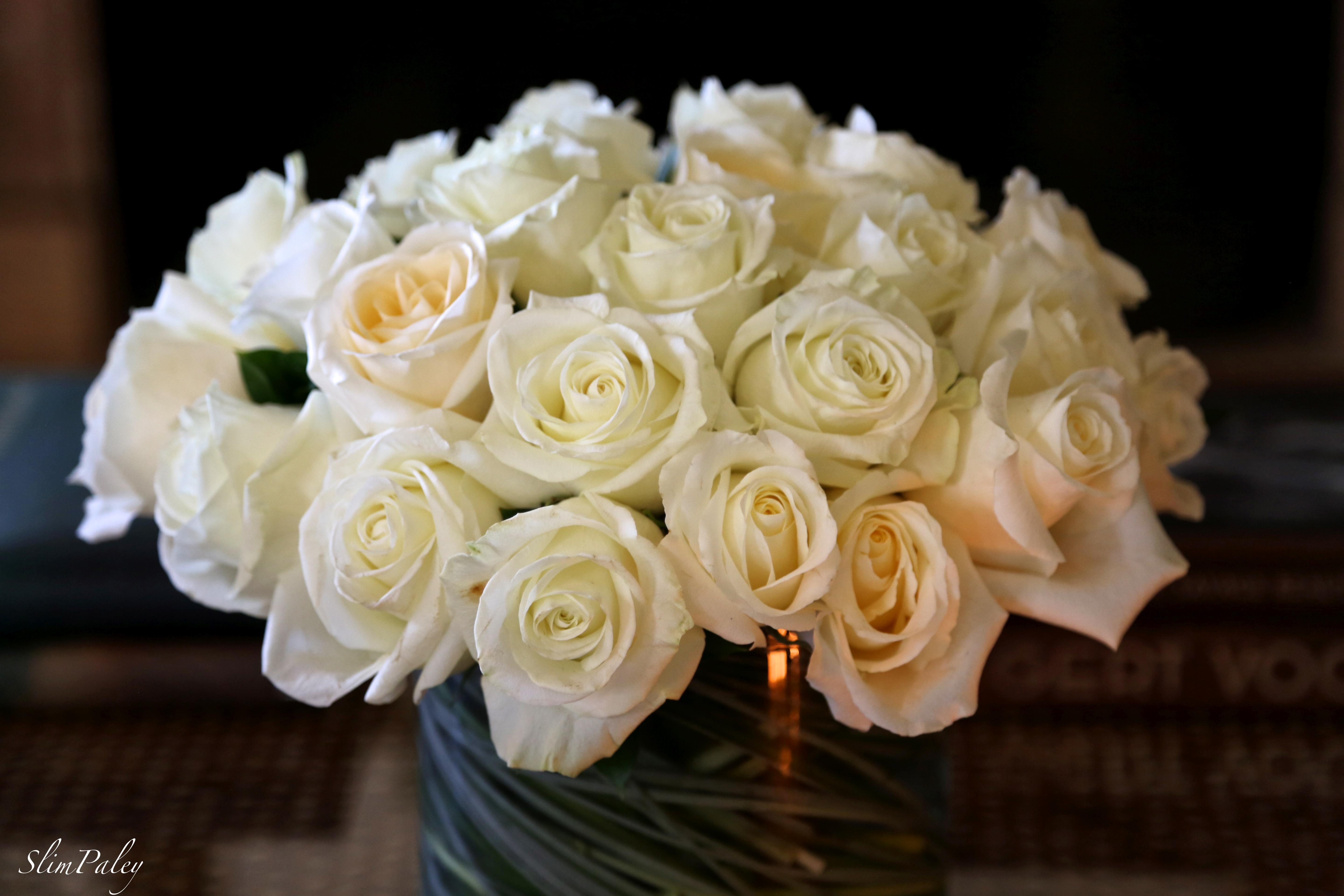 white roses, Slim Paley