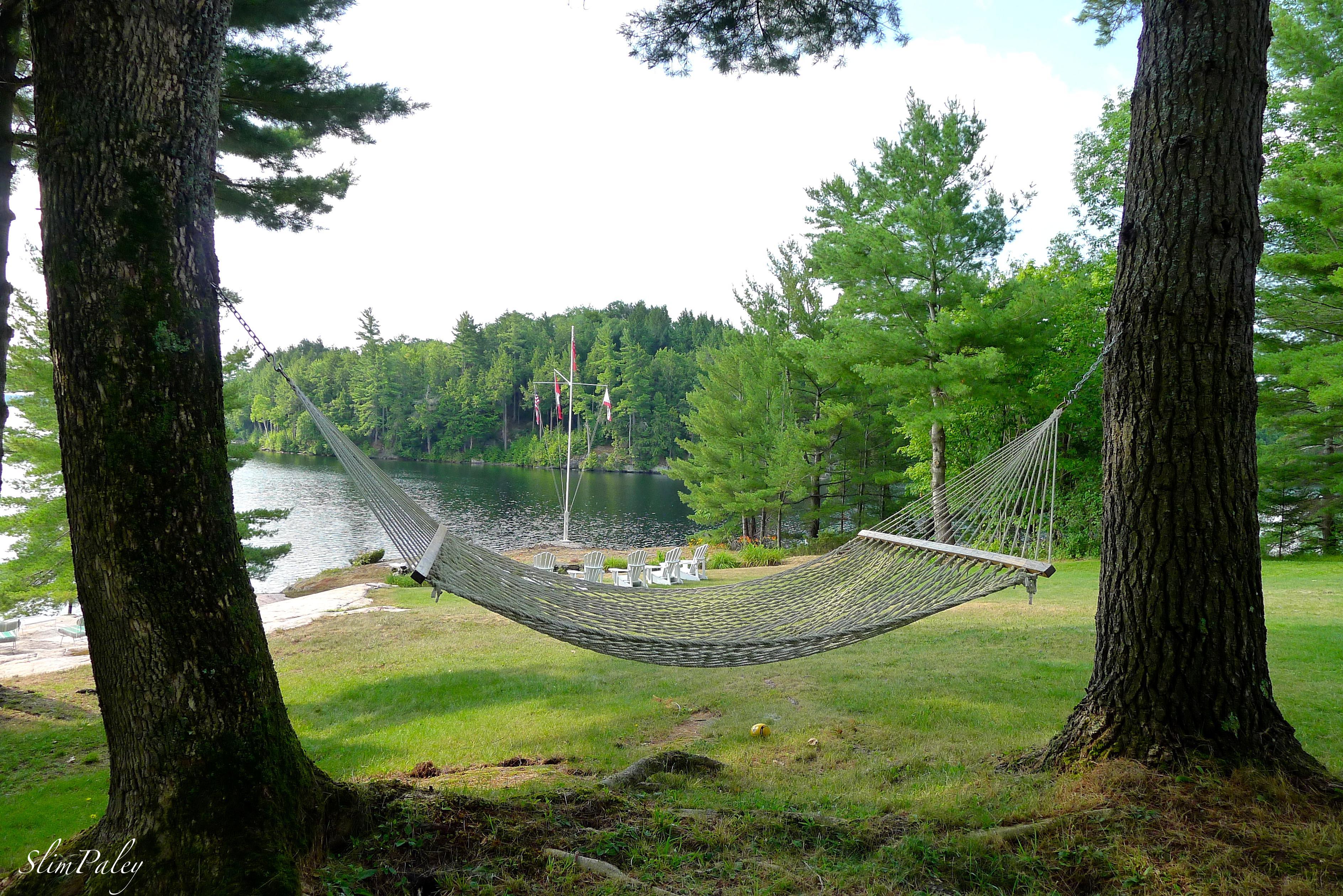 lakeside hammock, Muskoka, Ontario