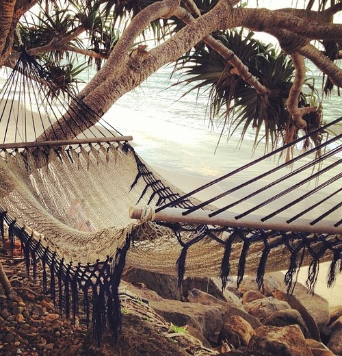 seaside hammock