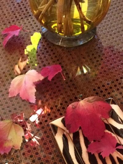 leaves.slimpaley