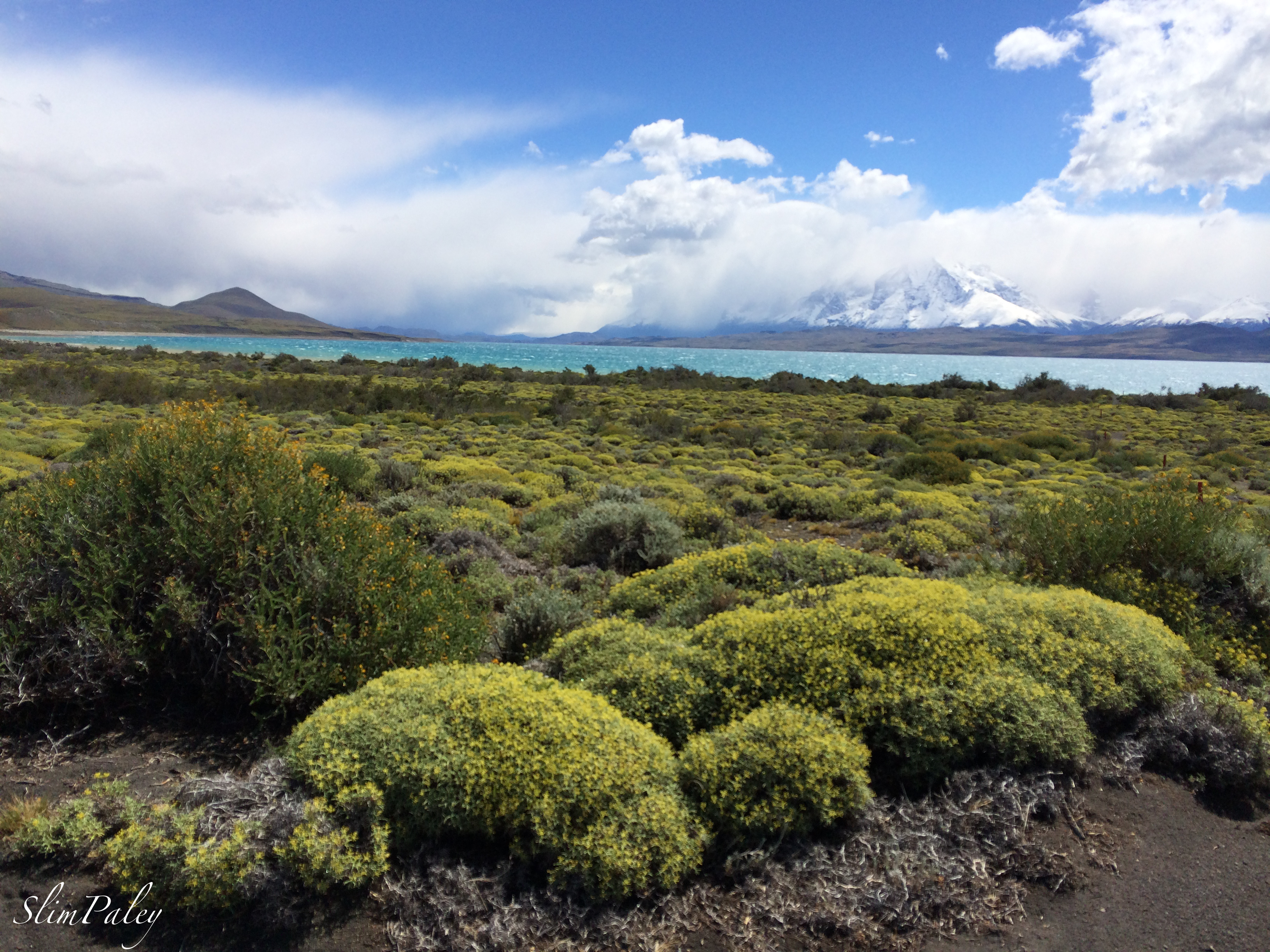 Patagonia , slimpaley.com