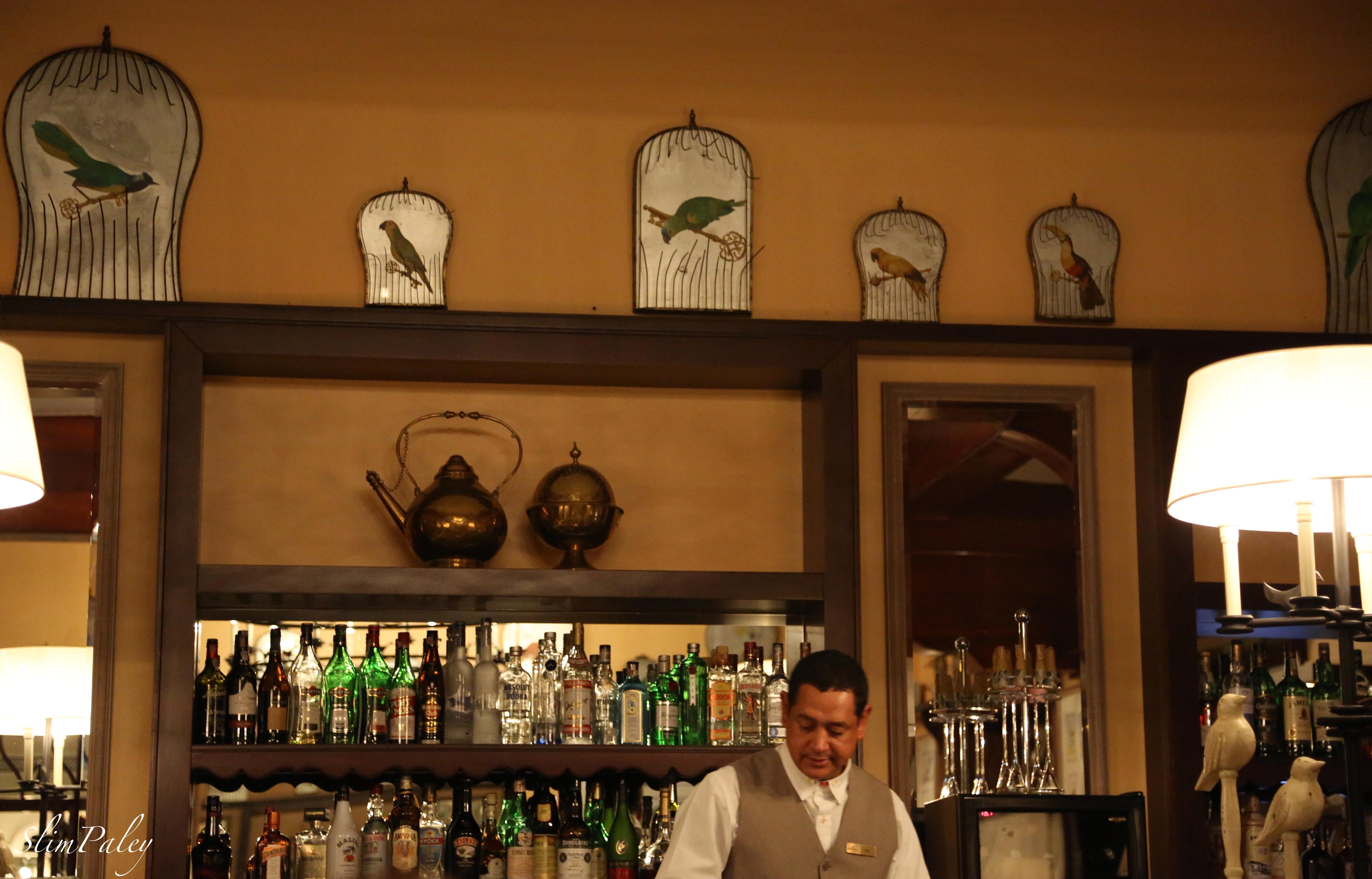 Bartender, Hotel Das Cataratas, Brazil, slimpaley.com