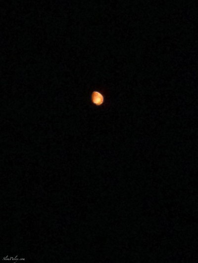 red moon , slimpaley.com