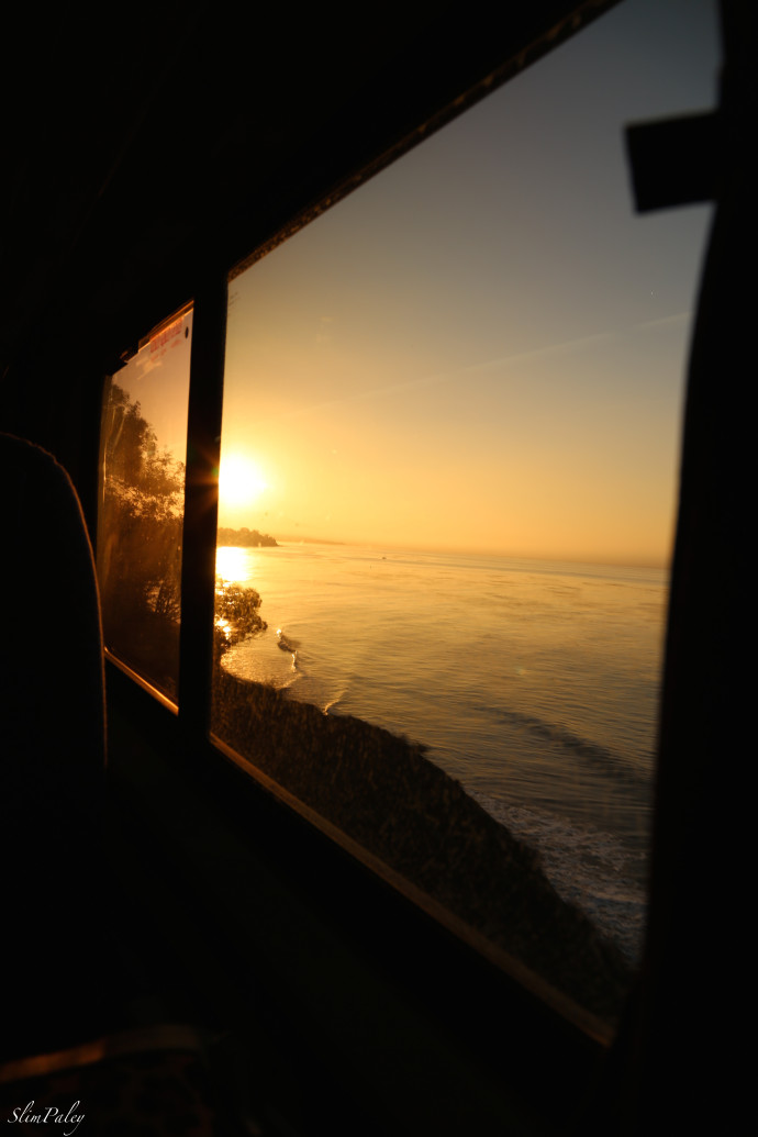 train travel, California slimpaley