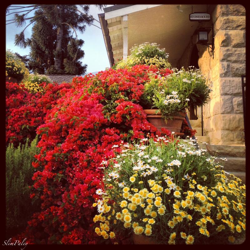 The Stone House Restaurant, San Ysidro Ranch, Montecito, Ca  slimpaley