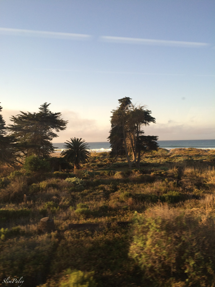 california coast by train slimpaley