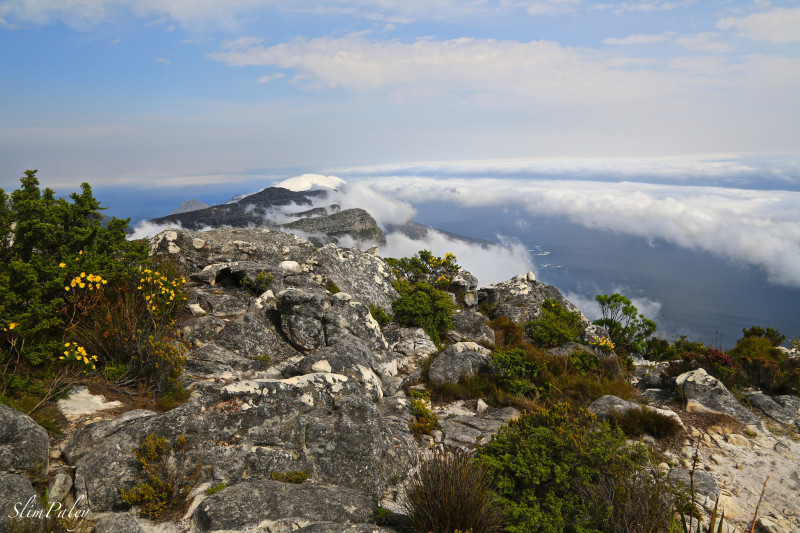 South Africa, SimPaley  top of Table Mountain