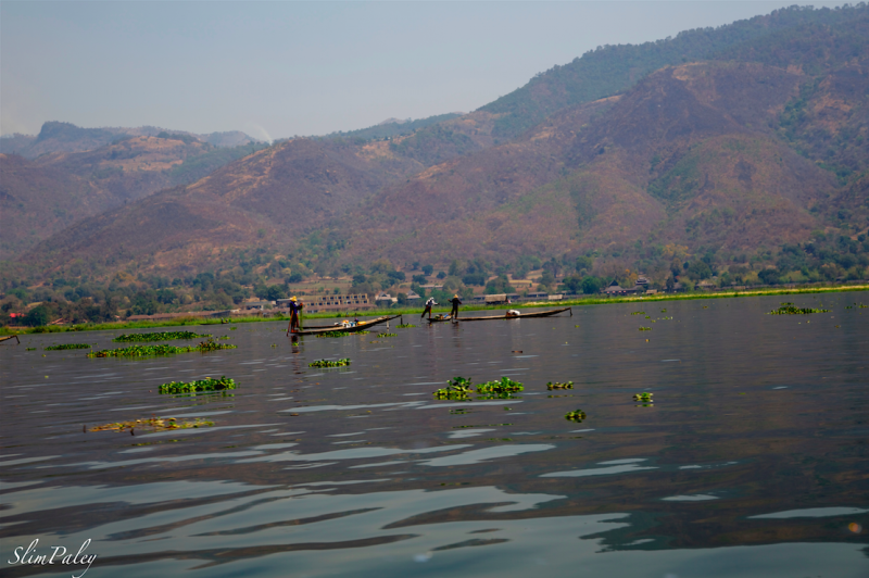 fishing on Lake Inle,  slimpaley