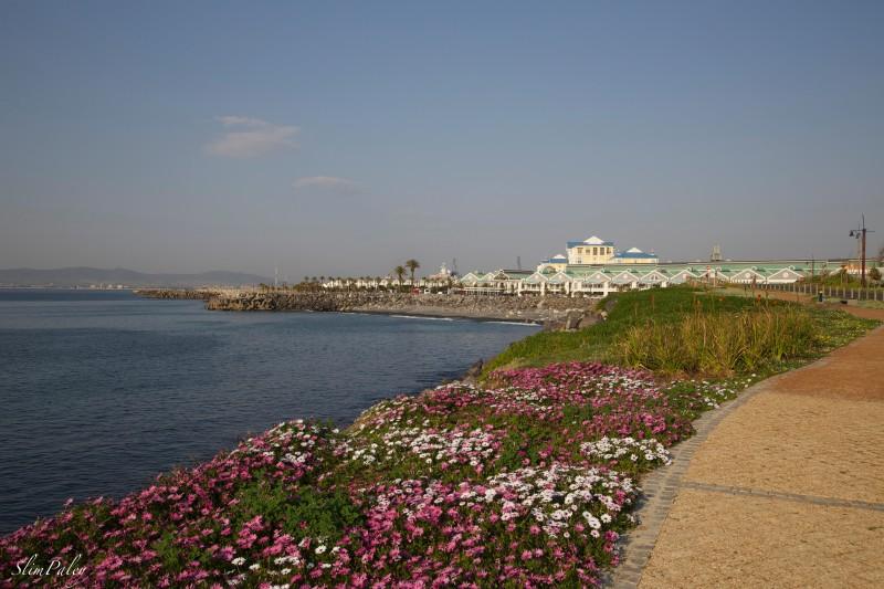 coastline Cape Town slimpaley