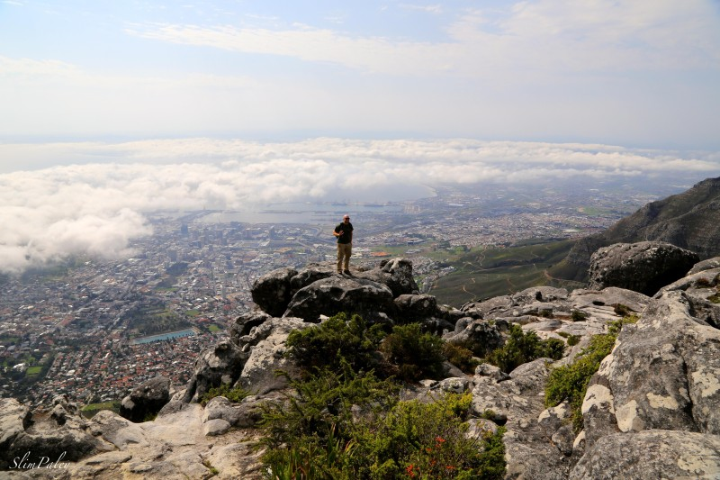 at the summit of Table Mountain  slimpaley