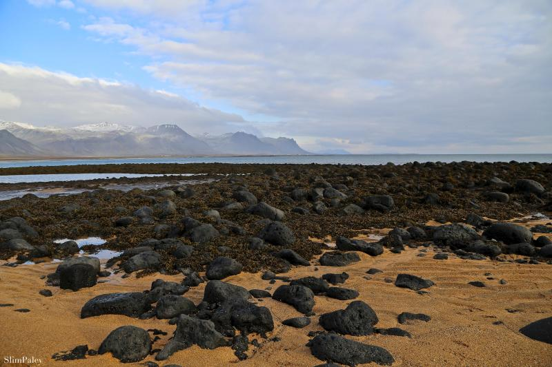 lava beach, Iceland