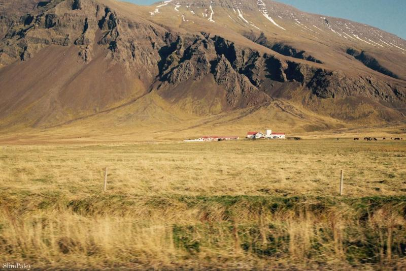 Red roof Iceland, Slim Paley